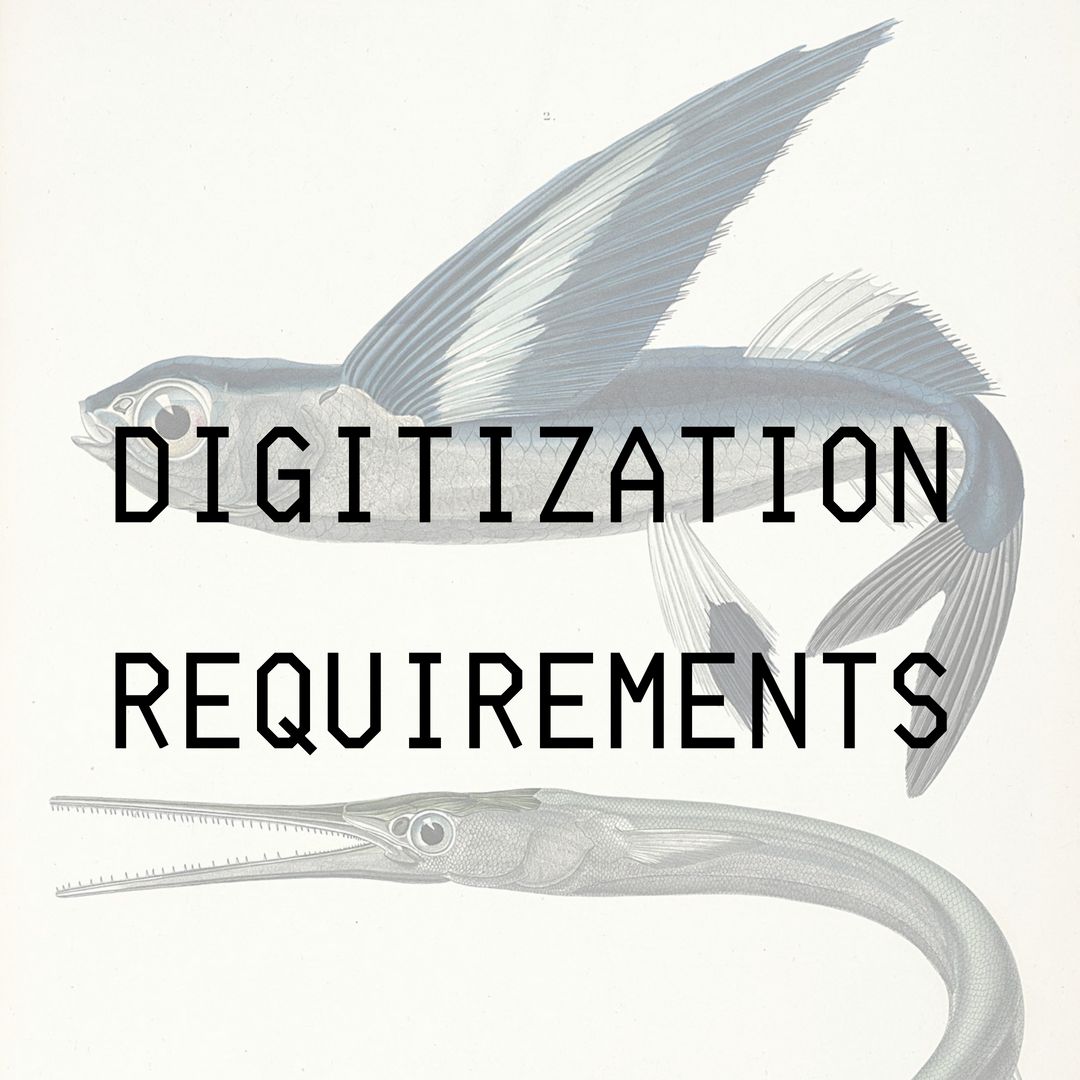 Digitization Requirements