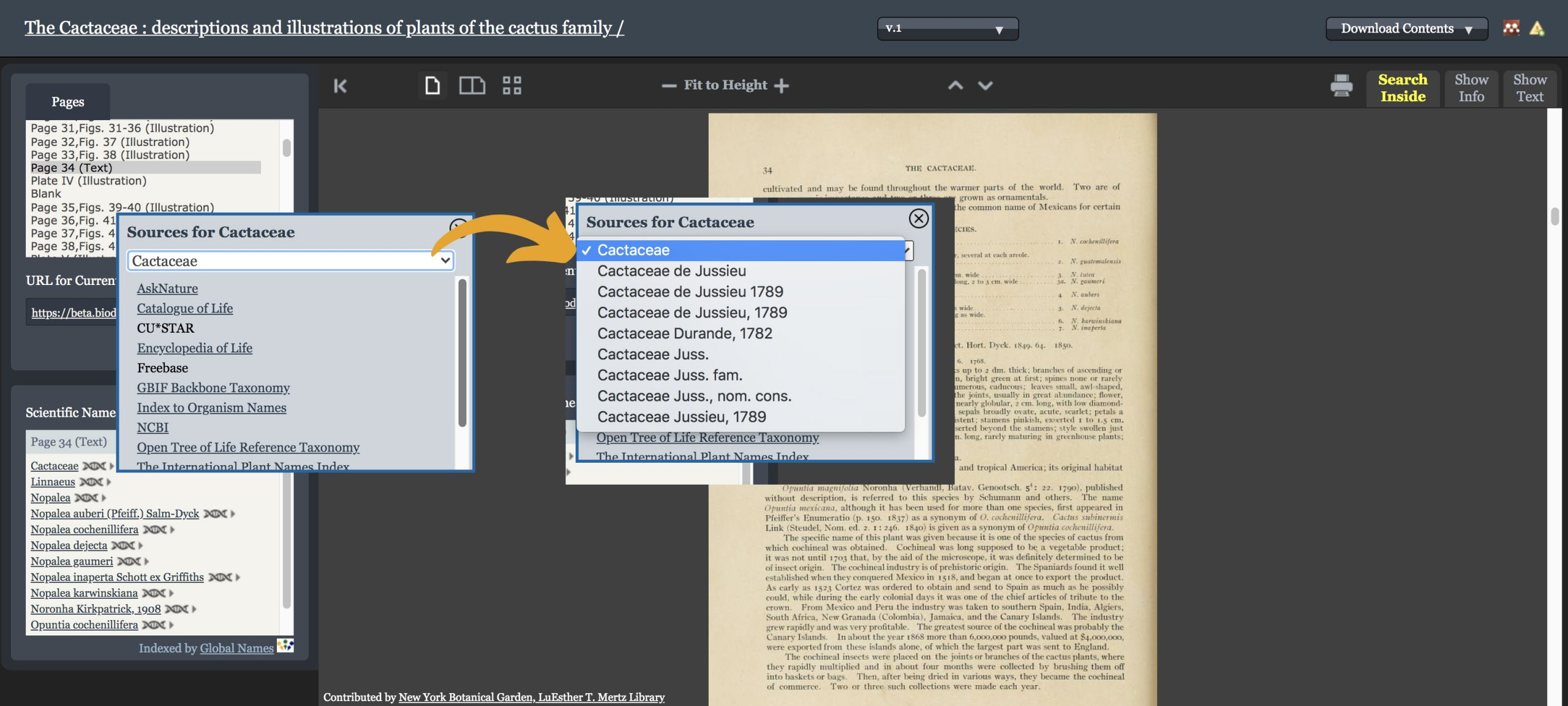 A digital book viewer interface with a popup box listing taxonomic database sources for the name Cactaceae.