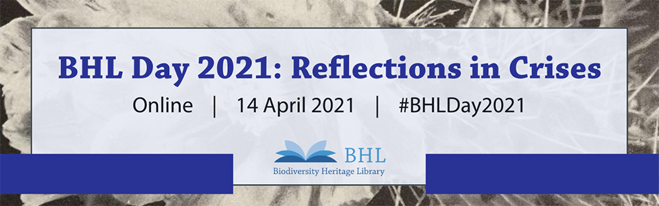 Graphic for BHL Day 2021: Reflections in Crises